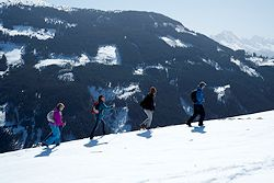 2014-04-01_kt_alpine_ingredients01_250