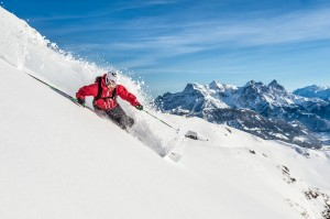 Skiing Horn