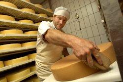 GENUSS REGION ÖSTERREICH TIROL - Paznauner Almkäse - Hermann Huber (Käser, Leiter der Hofkäserei Huber) in seinem Käselager beim Käse schmieren